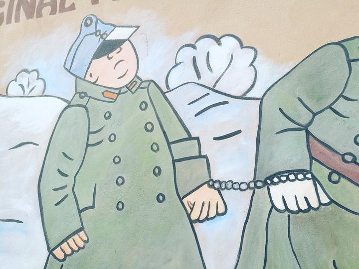 2奥匈帝国-帅克