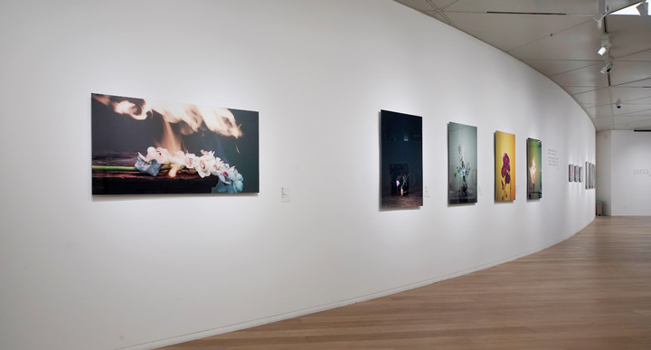 10 蒋志摄影作品《情书》系列展出现场